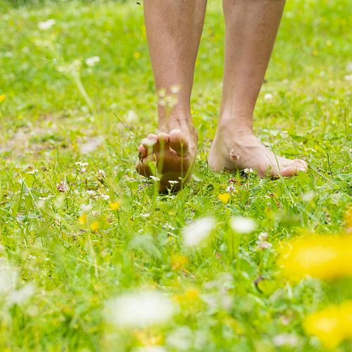 Barefoot Hiking Experience